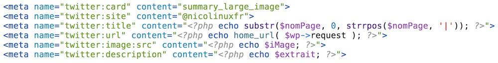 L'ensemble du code qui active les cartes Twitter sur mon blog personnel.